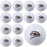 Western Michigan Broncos Dozen Pack Golf Balls